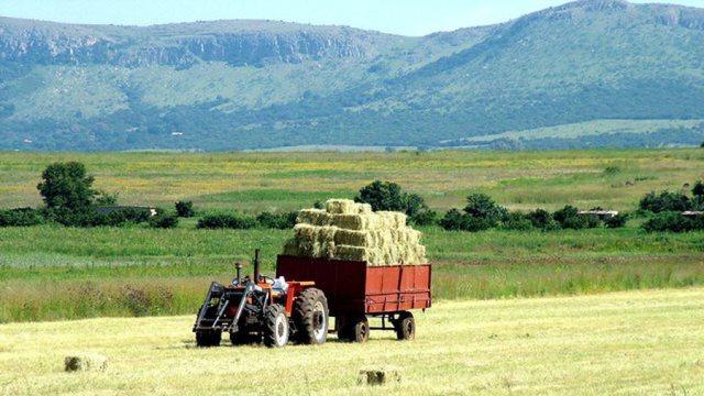 Αγρότες: Τι αλλάζει στην ασφάλιση και τις συντάξεις