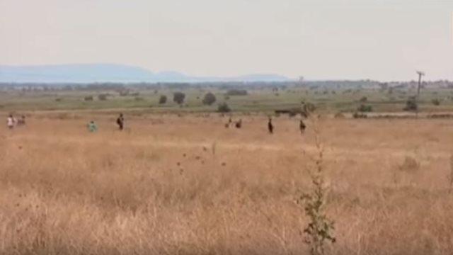 Βίντεο-οδοιπορικό στον Έβρο: Αναζητώντας τα προσφυγικά περάσματα