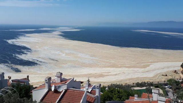 Τουρκία: Τι είναι η «γλίτσα» στη θάλασσα του Μαρμαρά - Πότε αναμένεται να  υποχωρήσει