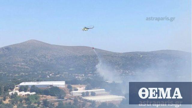 Σε ύφεση η πυρκαγιά στη Χίο