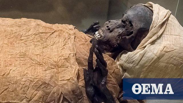 Ο «Γενναίος Φαραώ» συνελήφθη, ακρωτηριάστηκε και εκτελέστηκε
