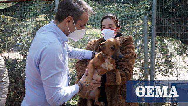 Στο καταφύγιο ζώων της Ηλιούπολης ο Μητσοτάκης