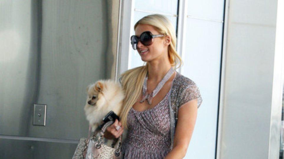 Paris Hilton: Ψωνίζοντας με το σκυλάκι της