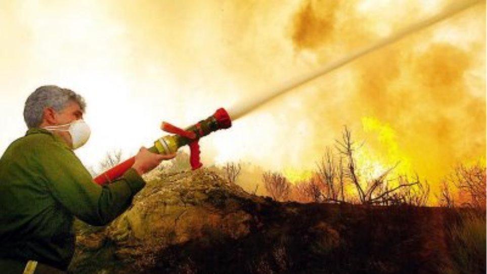 Πυρκαγιά στην Βίγλα Δομοκού