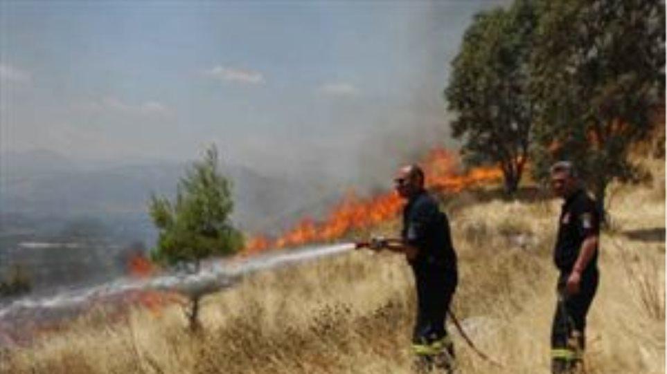 Φωτιά σε δύσβατη περιοχή στα Χανιά
