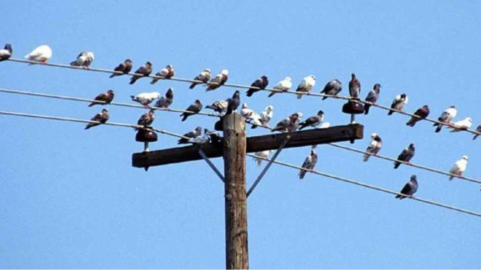 Κατανάλωνε ηλεκτρικό ρεύμα... απολύτως δωρεάν! 3abcd5cf943