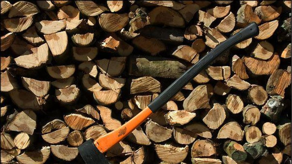 Τον «τσάκωσαν» ενώ έκοβε τα ελαιόδεντρα του γείτονά του