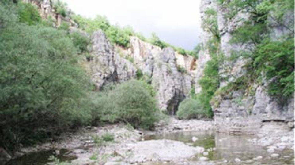 Στη μοίρα τους αφέθηκαν οι περιοχές Natura στην Ήπειρο!