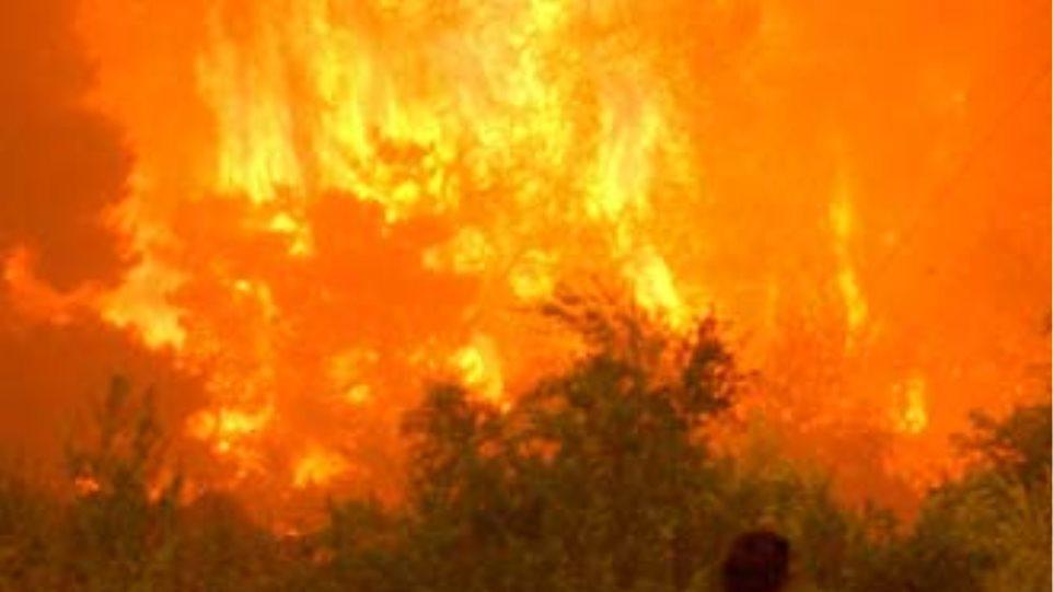 Σε εξέλιξη μεγάλη πυρκαγιά στο Σοφικό Κορινθίας