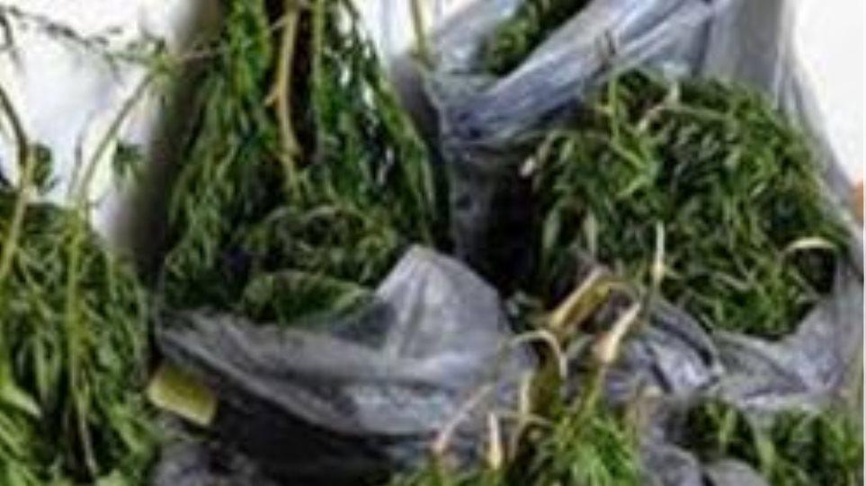 Σύλληψη για κατοχή ναρκωτικών ουσιών στο Ζευγαράκι Αιτωλοακαρνανίας