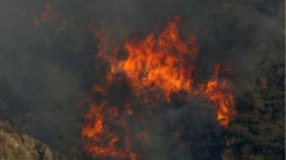 Υπό μερικό έλεγχο η φωτιά στη Δράμα