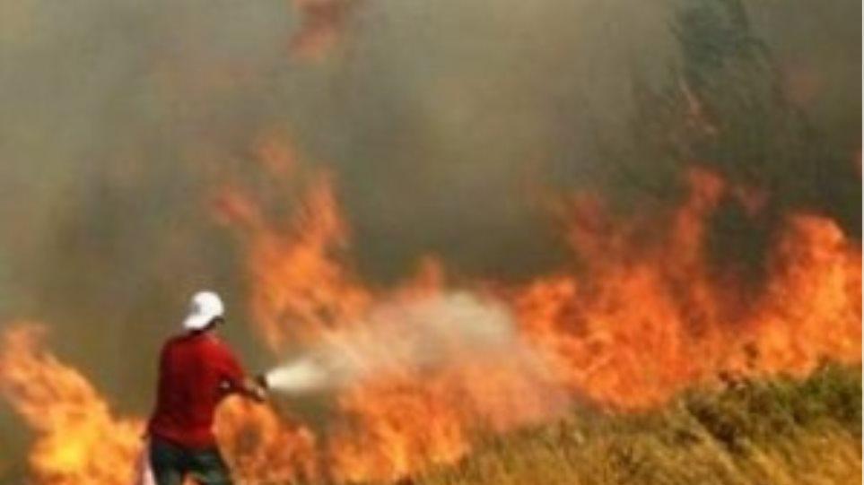 Πολυμέτωπη μάχη με τις φλόγες στην Κρήτη