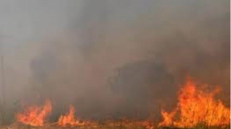 Σε εξέλιξη πυρκαγιά στην Λακωνία