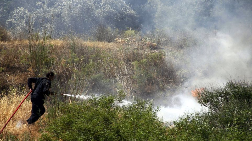 Φωτιά στη Δάριζα Τροιζηνίας