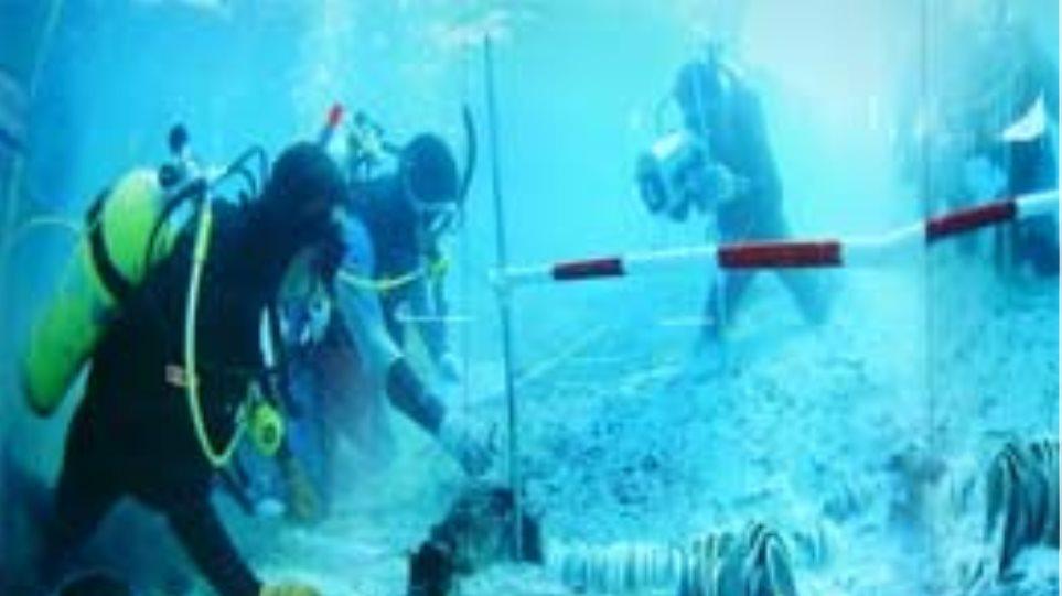 Χιλιάδες κινεζικές αντίκες θα… αλιευθούν από βυθισμένο σκάφος