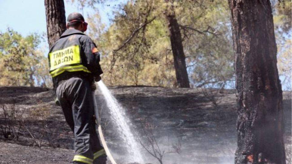 Καταδίκη 58χρονου για πυρκαγιά στην Ιεράπετρα