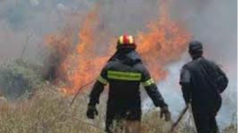 Υπό μερικό έλεγχο η πυρκαγιά στη Λακωνία