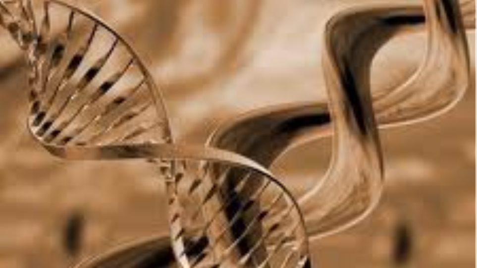 Πόσο διαρκεί τελικά το DNA;