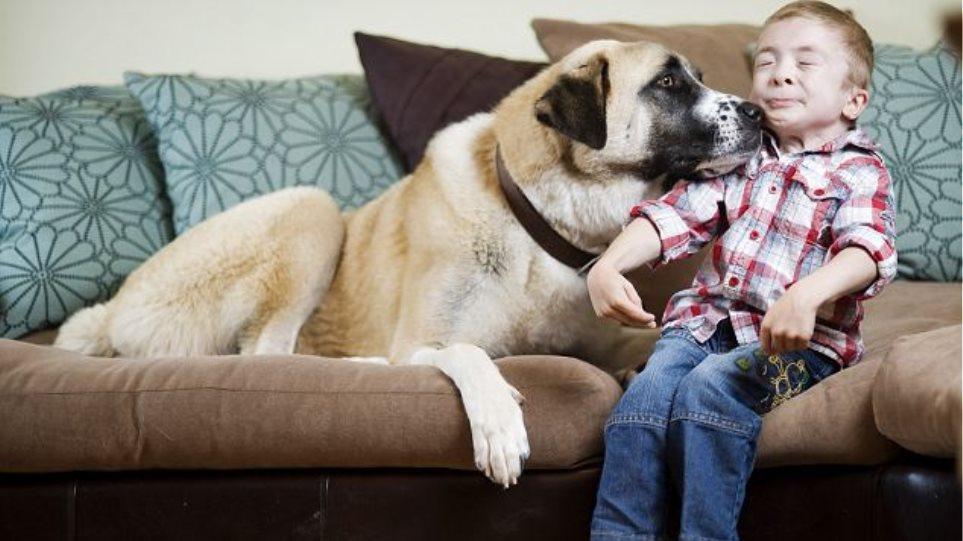 Τρίποδος σκύλος βοήθησε αγόρι με σπάνια αρρώστια