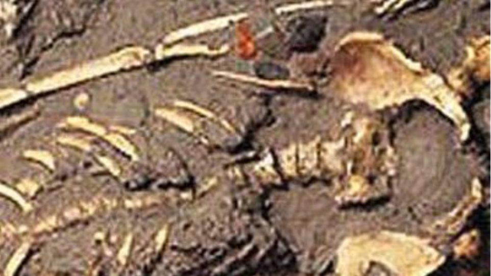 Βρέθηκε ανθρώπινος σκελετός σε ορεινή περιοχή της Κοζάνης