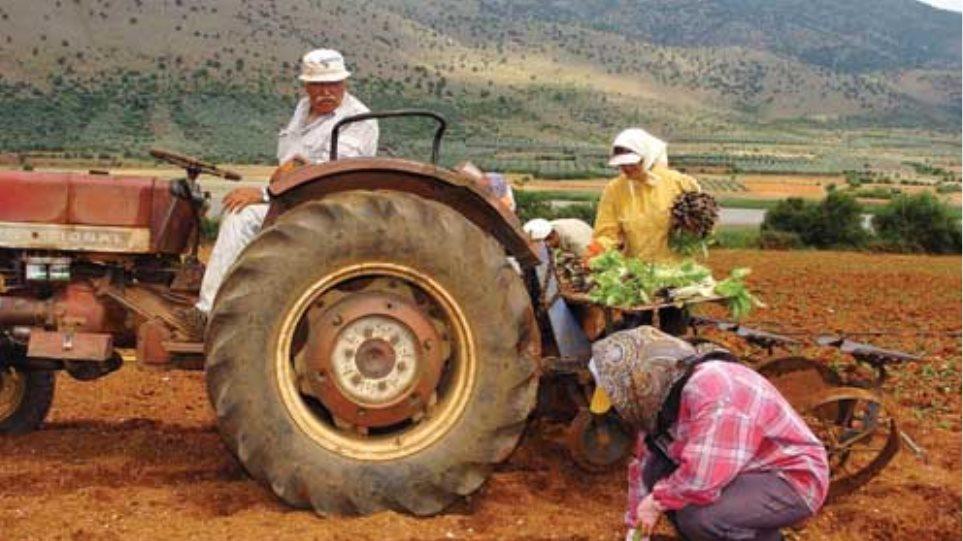 Θα επιδοτούνται οι αγρότες για την τήρηση λογιστικών βιβλίων