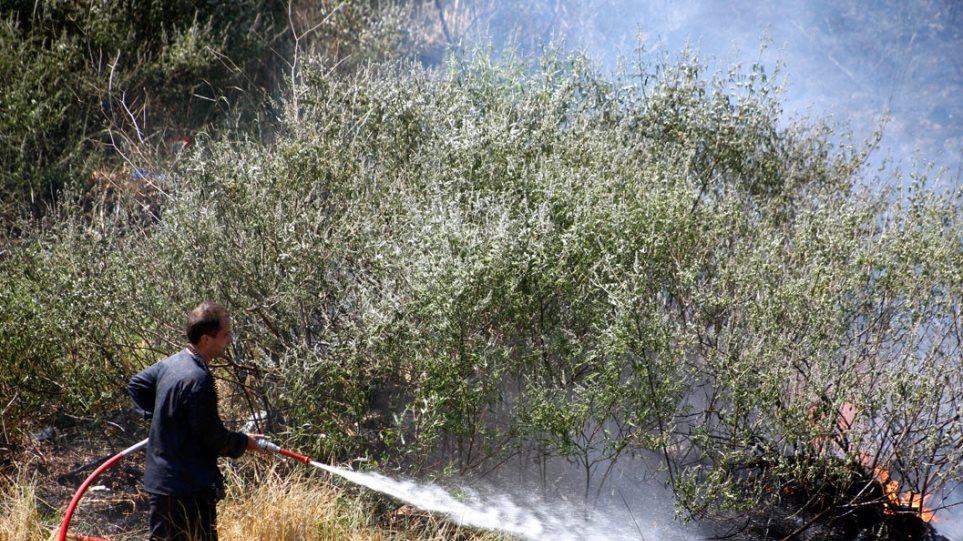 Υπό μερικό έλεγχο φωτιά στη Ζάκυνθο