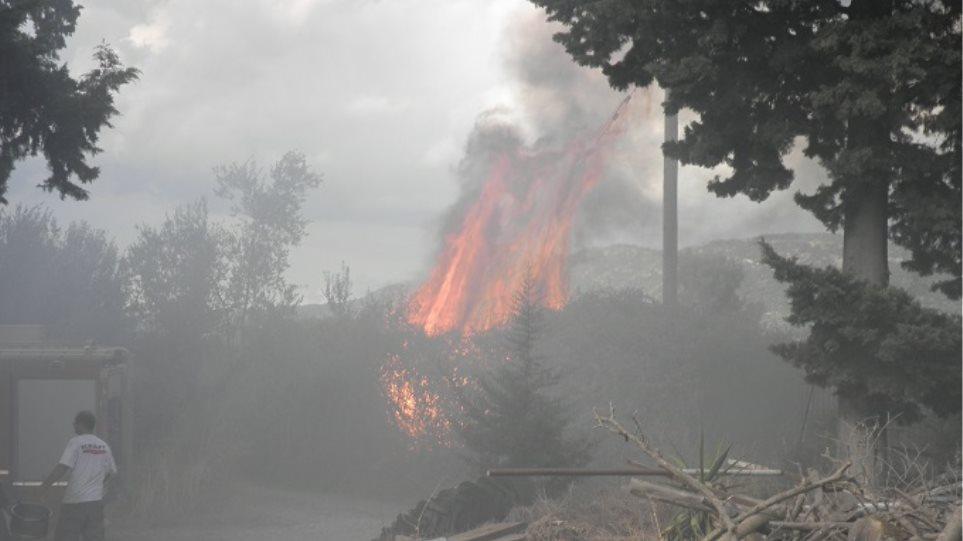 Φωτιά σε έκταση με ξερά χόρτα στο Αγρίνιο