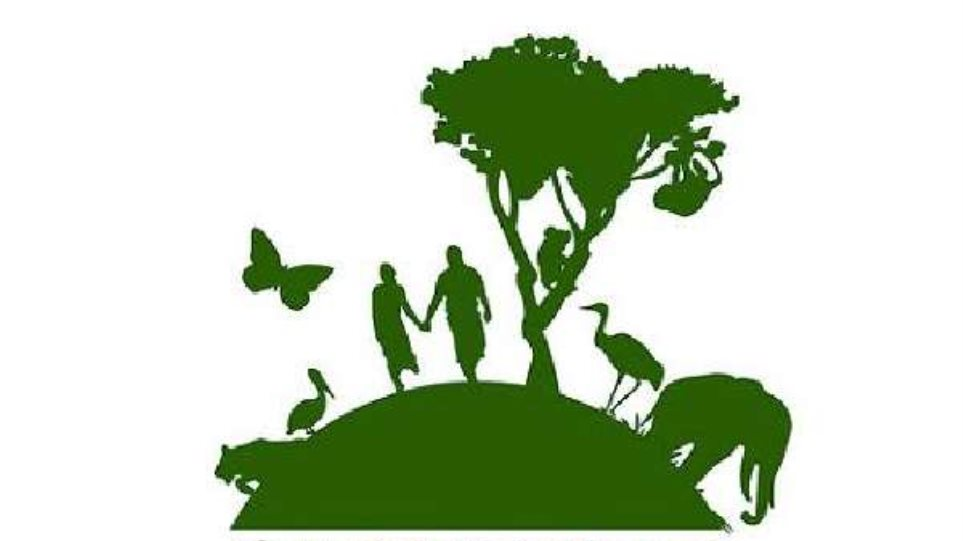 Η Greenpeace κατηγορεί Gillette και Oreos για καταστροφή των δασών