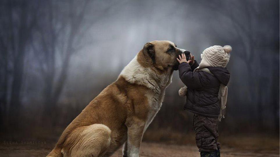 Εκπληκτικές Φωτογραφίες: Η τρυφερή σχέση των παιδιών με τα ζώα!