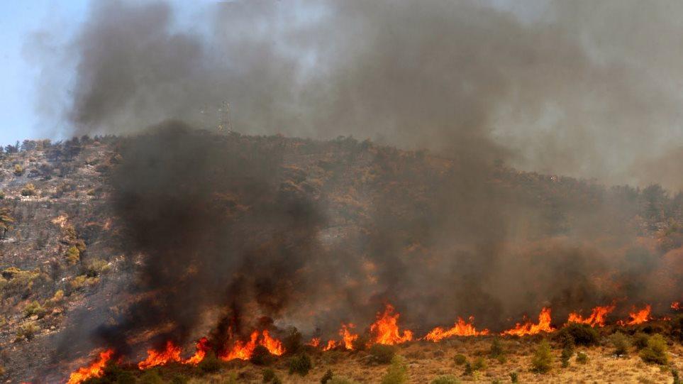 Καστοριά: Φωτιές σε δασικές εκτάσεις μέσα στο Φλεβάρη!
