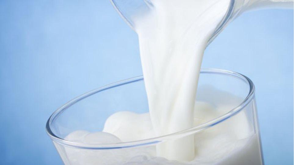 Nέα έρευνα - «βόμβα»: Κίνδυνος για την υγεία η υπερβολική κατανάλωση γάλατος;