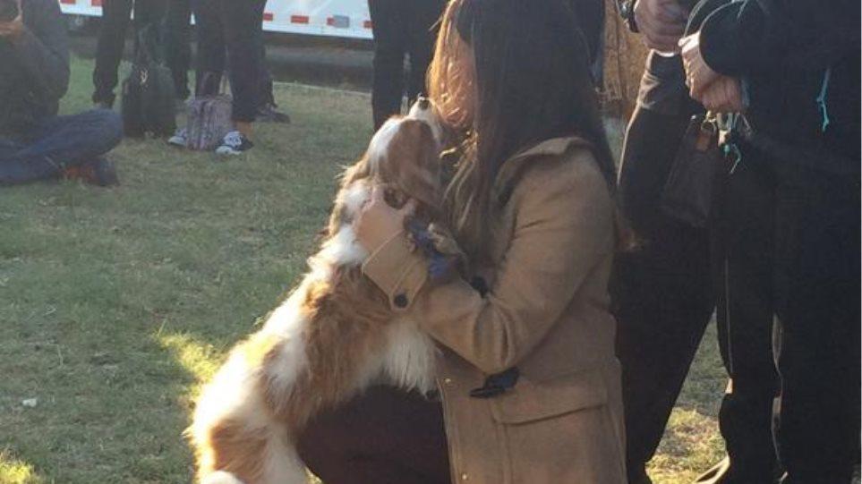 ΗΠΑ: Η νοσηλεύτρια με Εμπολα επανενώθηκε με τον σκύλο της!