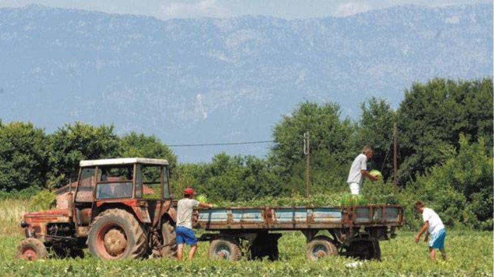 Με λουκέτο κινδυνεύουν 3.362 αγροτικοί συνεταιρισμοί