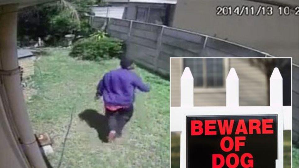 Βίντεο: Όταν ένας διαρρήκτης ήρθε αντιμέτωπος με τον πιο... τρομακτικό σκύλο
