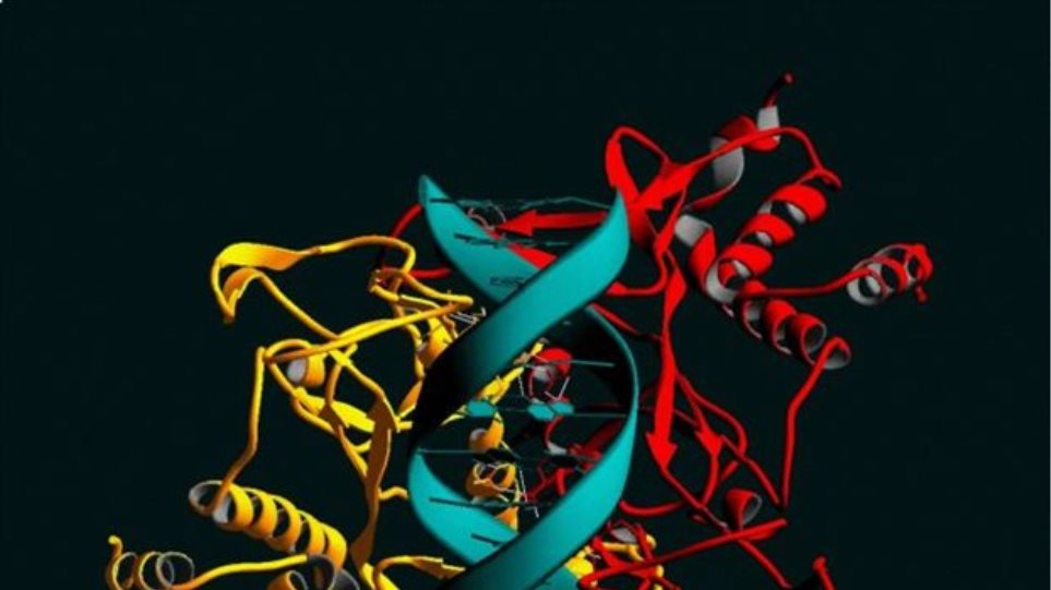 Τα πρώτα τεχνητά ένζυμα είναι γεγονός