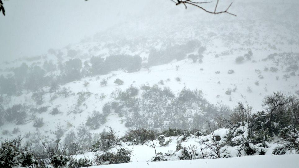Μικροπροβλήματα από τον χιονιά σε ορεινή Αρκαδία και Κορινθία