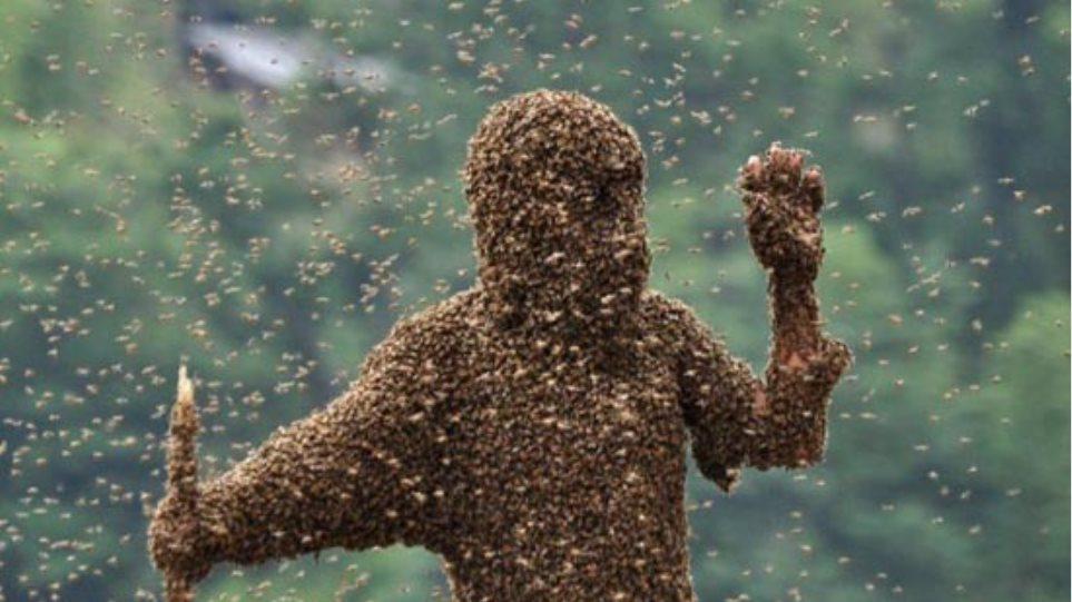 ΗΠΑ: Τον τσίμπησαν 500-1000 μέλισσες αλλά επέζησε!