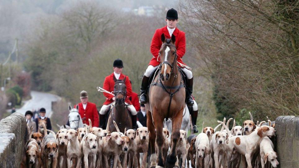 Αγγλία: Η αλεπού νίκησε κατά κράτος τον Κάμερον