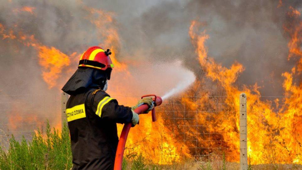 Νέα πυρκαγιά ξέσπασε κοντά στην Χαλκίδα - Μαίνεται ανεξέλεγκτη