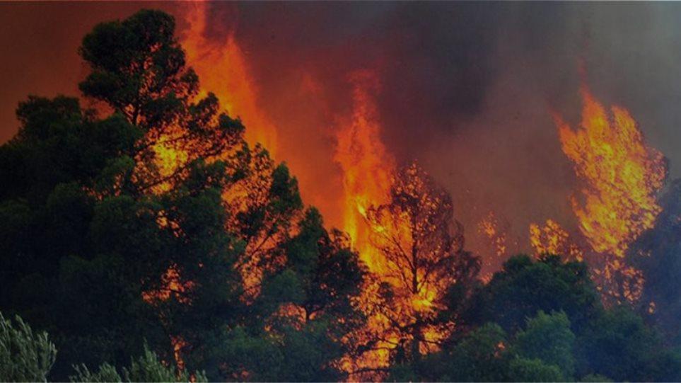 Ολονύχτια μάχη με τις διάσπαρτες εστίες φωτιάς στον Υμηττό