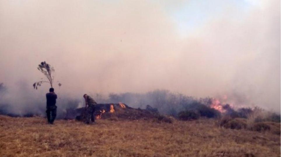 Νεάπολη: Φλόγες πλησιάζουν ξανά στην κατοικημένη περιοχή - Σε εξέλιξη φωτιά στην Αργολίδα