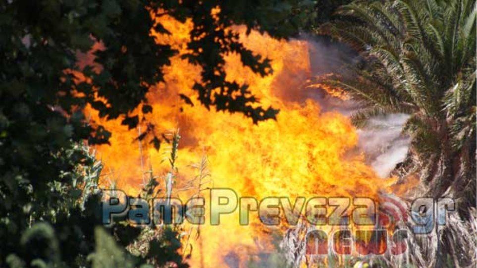 Μεγάλη φωτιά στο Καλαμίτσι στην Πρέβεζα