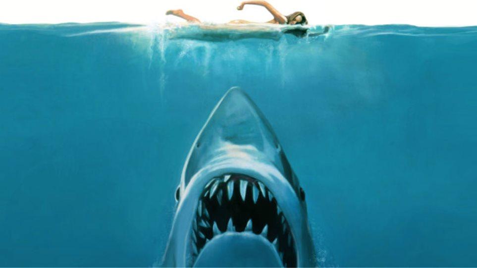 Δέκα ταινίες με καρχαρίες που θα στοιχειώσουν τα μπάνια σου