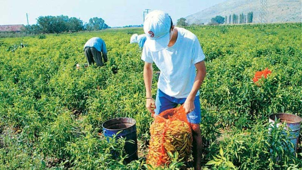Ισως δεν είναι στο νέο πολυνομοσχέδιο η φορολόγηση των αγροτών, λέει ο αν. υπ. Αγροτικής Ανάπτυξης