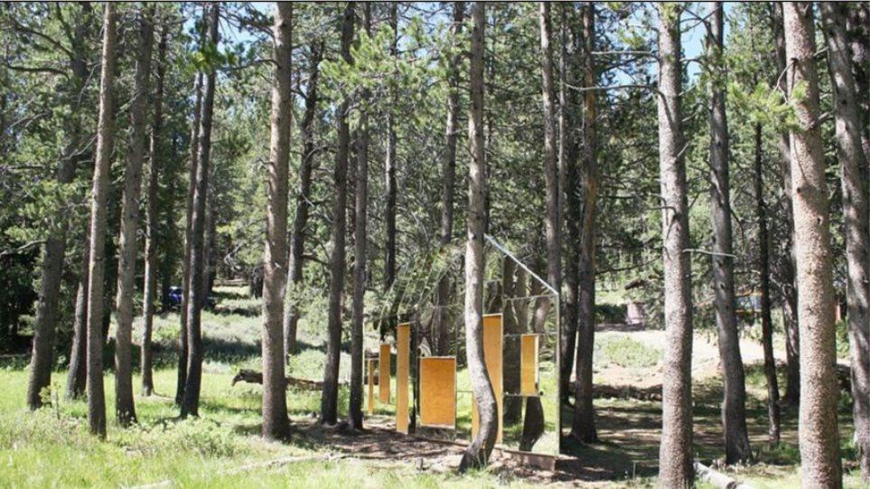 Φωτογραφίες: Ανακαλύψτε το σπίτι-χαμαιλέοντα που κρύβεται μέσα στο δάσος
