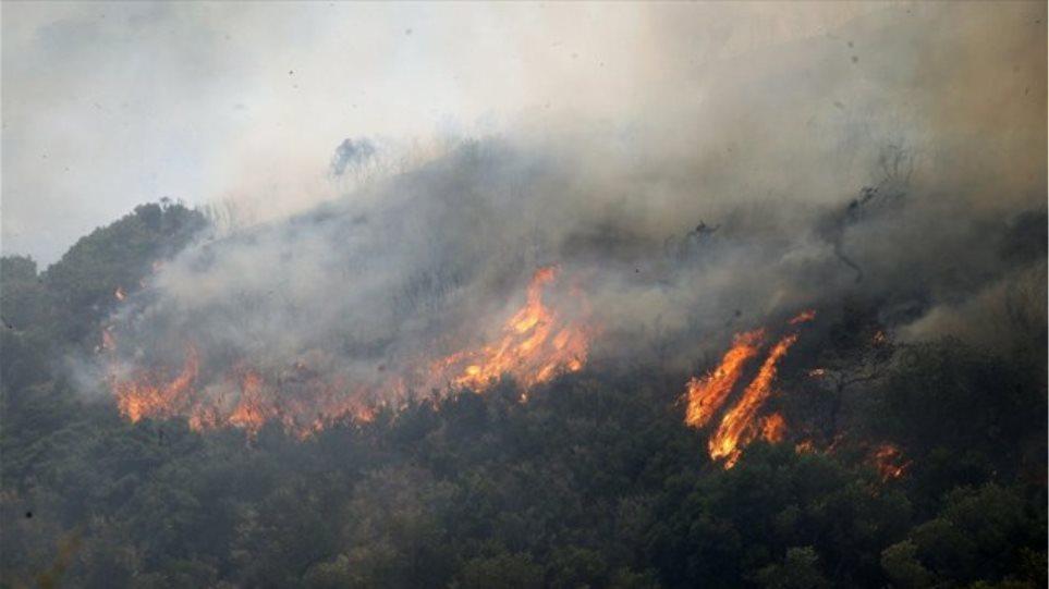Πολύ υψηλός κίνδυνος πυρκαγιάς και σήμερα σε πολλές περιοχές
