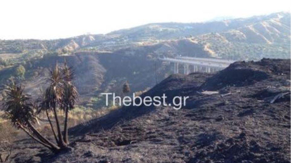 Πάτρα: 200 περίπου στρέμματα έκαψαν οι φλόγες στα Συχαινά