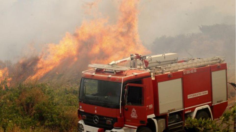 Σε ύφεση η πυρκαγιά στο Ξυλόκαστρο