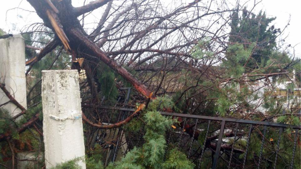 Φωτογραφίες: Ανεμοστρόβιλος σήκωσε στέγες στην Ξάνθη