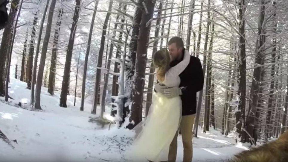 Ζευγάρι ανέθεσε στο σκύλο του να «βιντεοσκοπήσει» τον γάμο τους - Δείτε το αποτέλεσμα